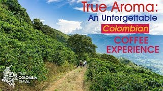 True Colombia Travel True Aroma Experience