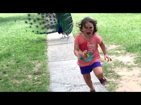 Thumbnail: LAUGH LIKE HELL with FUNNY KIDS & BABIES - Super FUNNY & CUTE compilation