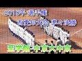 中京大中京vs至学館 フル 2018年夏の大会