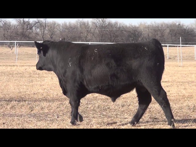 Express Ranches Lot 48