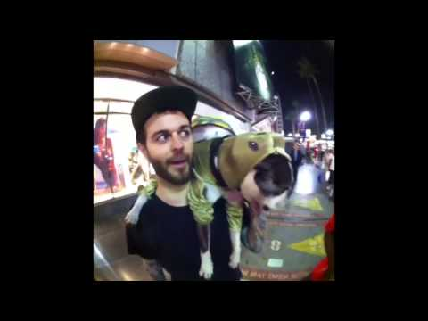 Buster Beans Compilation 1: Curtis Lepore's Vine