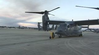 Osprey Take Off For National Championship Flyover in Tampa