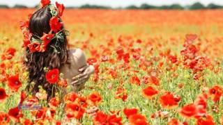 ♡ Été  D'Amour ♡ - Gheorghe Zamfir