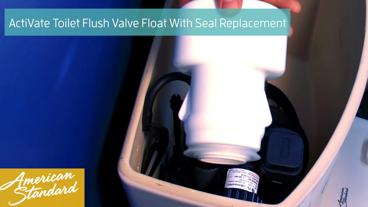 How To Replace The Flush Valve Float With Seal For Your