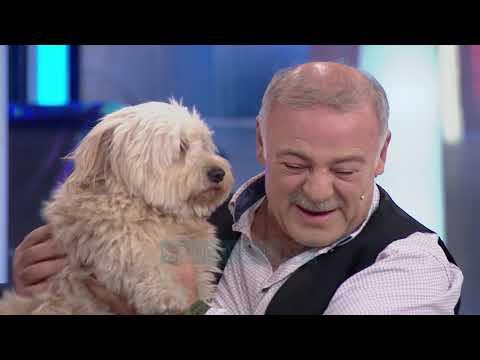 Al Pazar - 8 Dhjetor 2018 - Pjesa 2 - Show Humor - Vizion Plus