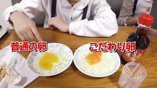「日本一こだわり卵」と「普通の卵」食べ比べ♪ おはようございます!#88