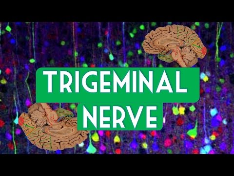 Patient Success Story | Treatment of Trigeminal Neuralgia | Dr. Prithvi Giri.
