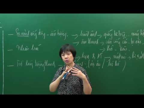 Phân tích người lái đò sông đà (P2) - PEN C - Cô Trịnh Thu Tuyết