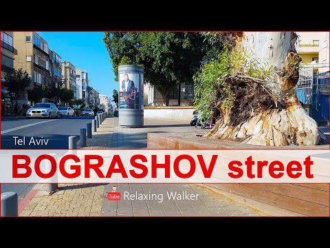 Walking Down The BOGRASHOV Street In Tel Aviv, Israel