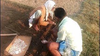 Village Life Style Part 2 ! Hussain backpackar || VILLAGE LIFESTYLE . ग्राम लाइफ स्टाइल भाग 2