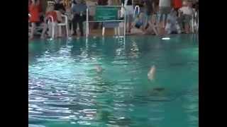 """Christina und Sandra - Duett """"Fluch der Karibik"""" - Deutsche Jugendmeisterschaft 2006"""