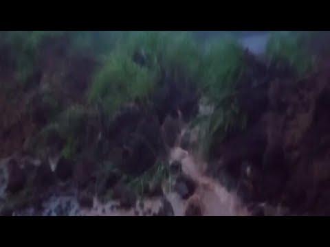 കോട്ടയം, പത്തനംതിട്ട, ഇടുക്കി ജില്ലകളിൽ കനത്തമഴ | Kottayam | Idukki | Rain