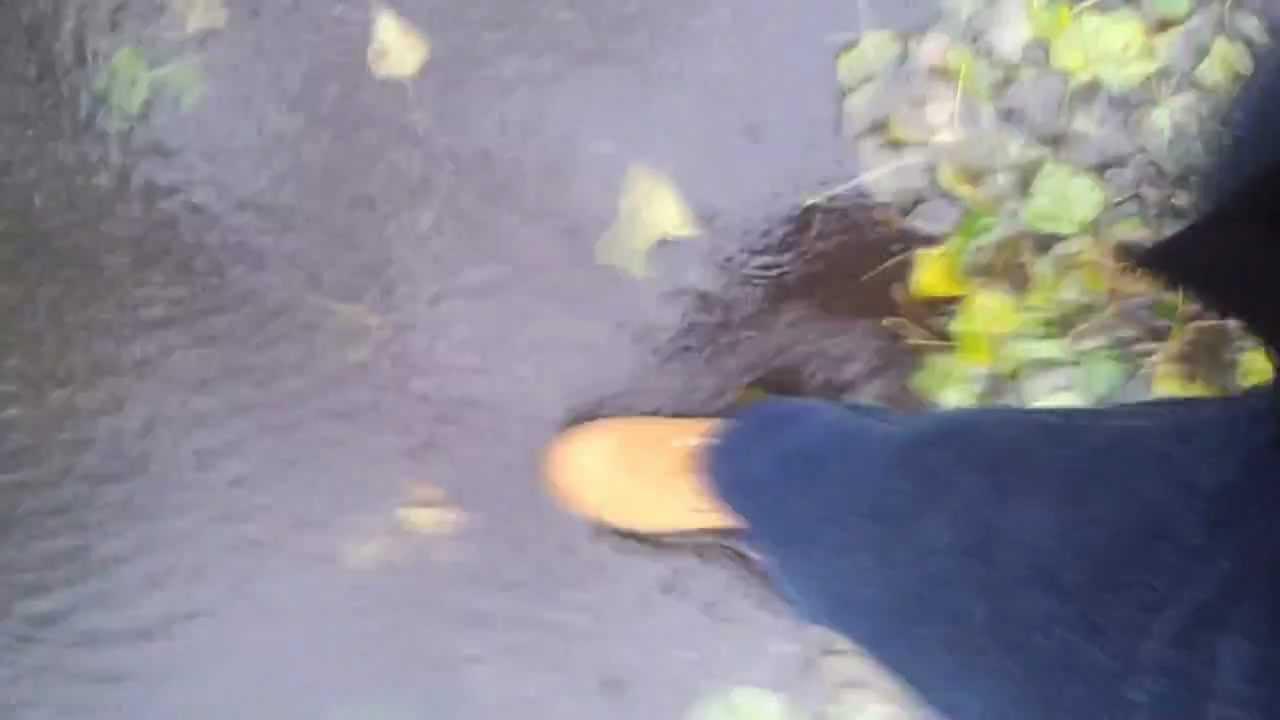 a7f216e80778 Оригинальные ботинки от Timberland - никогда не промокают. Timber Boots