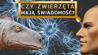 Dlaczego dinozaury nie wykształciły inteligencji zdolnej do stworzenia cywilizacji?
