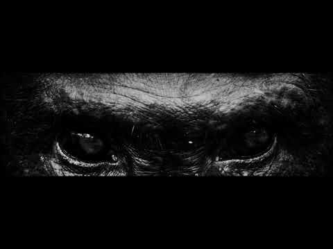 OLD MAN GLOOM - Light Of Meaning / Seminar VIII (official album trailer)