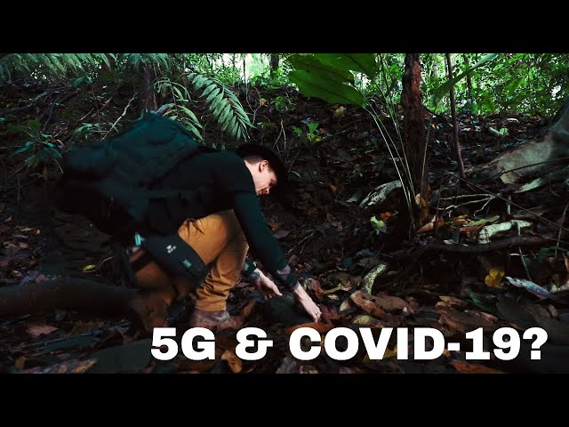 5G COVId-19 Corona Conspiracies-THEY ARE NOT TELLING YOU!-  Chaga Tea Jungle
