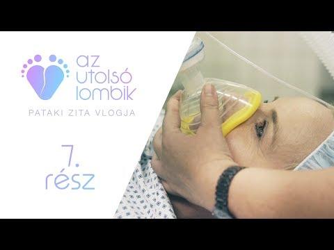 Pataki Zita: Az utolsó lombik 7. rész letöltés