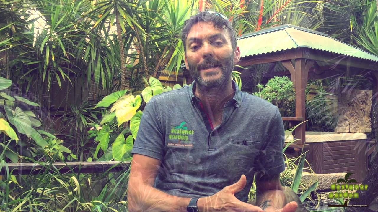 Cairns Best Landscaper Designer Garden Company YouTube