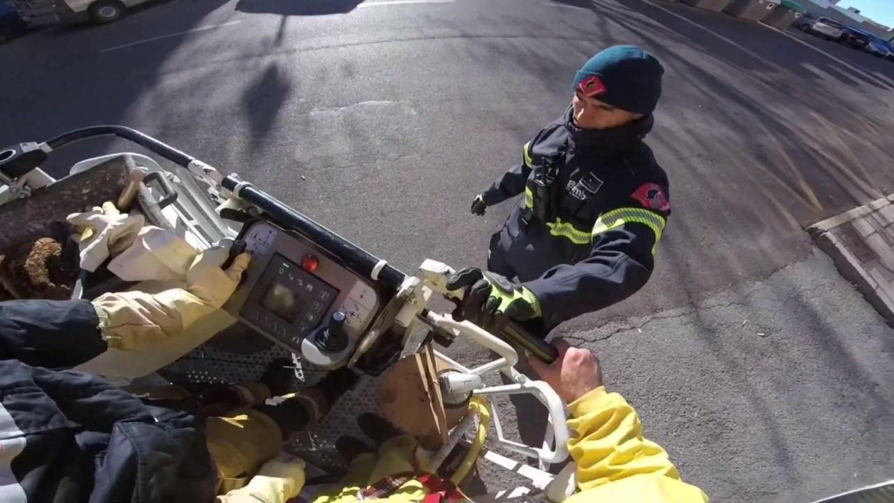 Colaboración con los bomberos: Extracción de enjambre.