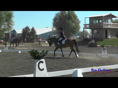 082D Caitlin Elizabeth Miller on Ricky JR/YR Beginner Novice Dressage Spokane Fall HT Sept. 2017