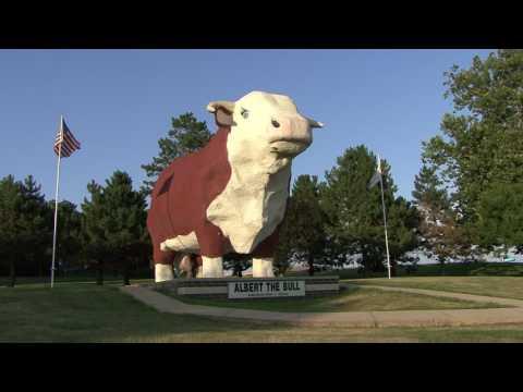 Albert the Bull: My Story