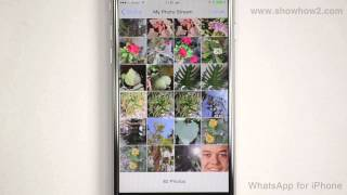 WhatsApp For iPhone - How To Change Your Profile Photo