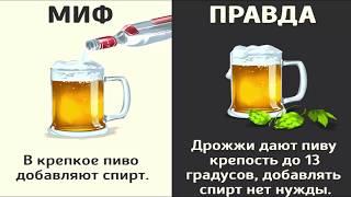 Мифы о напитках Правда или ложь Это интересно!