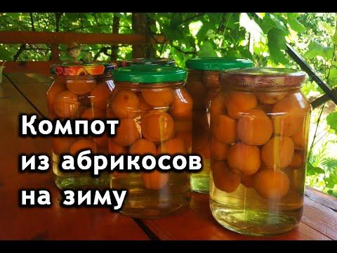 Компот из абрикос на зиму. Как приготовить абрикосовый компот.