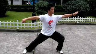 shadow-boxing (Taiji) by Hanyue (寒月) 陳氏18式