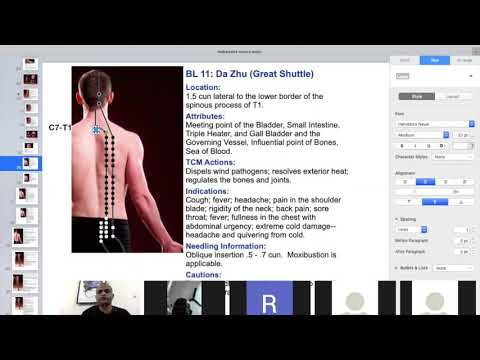 3 Acupuncture Exam preparation,Influencial point part 1
