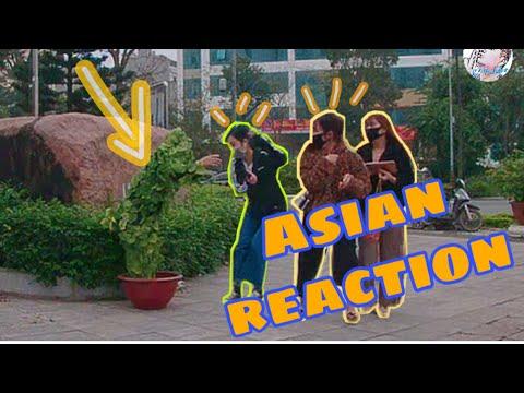 Asians half cry and half laugh - Bushman scare prank 2020    Funny bushman