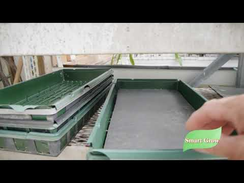 Growing Micro Greens on foam