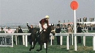 The Grand National 1974