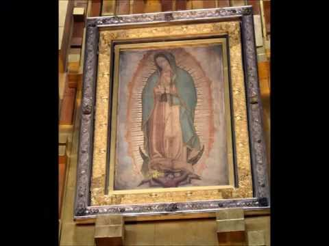 Our Lady of Guadalupe & the Church
