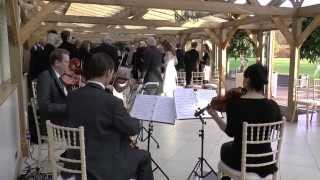 One Day Like this, Elbow - Capital String Quartet, live recording of Brides wedding entrance.
