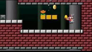 Super Mario Bros 2 Mega Mario X Part 5