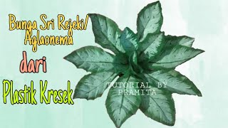 DIY Cara Membuat Bunga Sri Rejeki/Aglonema dari plastik kresek