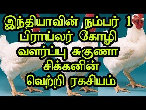 Suguna Chicken Poultry Farms | Vetri Ragasiyam |  MukilApp