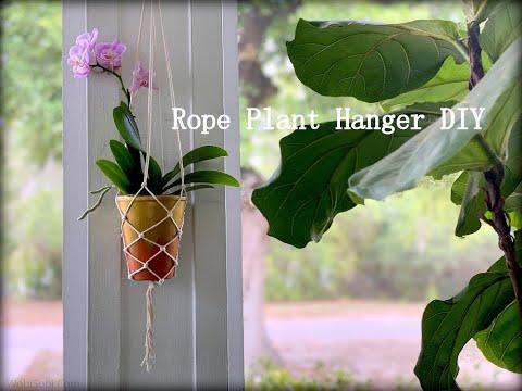 easy-rope,-plant-hanger:-diy