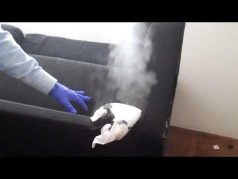 Bed Bugs Tucson Pest Control - Essential Pest Control