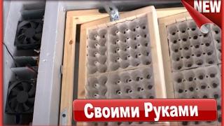 Самодельный Инкубатор своими руками с переворотом. Как сделать инкубатор для яиц .