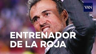 Luis Enrique nuevo seleccionador de la 'Roja'