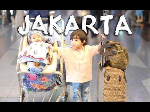 CERITASNF # 005 - PULANG KE JAKARTA