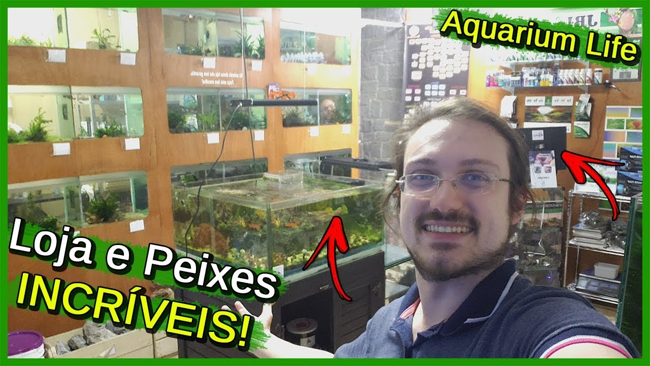 Visitei uma Loja de AQUARISMO! - Aquarium Life