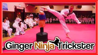 LIVE Taekwondo Kicking on the BOB XL with Portugal's Elite 🇵🇹