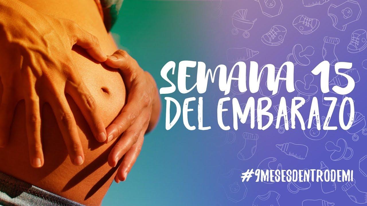 6dbde1ff1 Semana 15 de embarazo   9 meses dentro de mí - YouTube