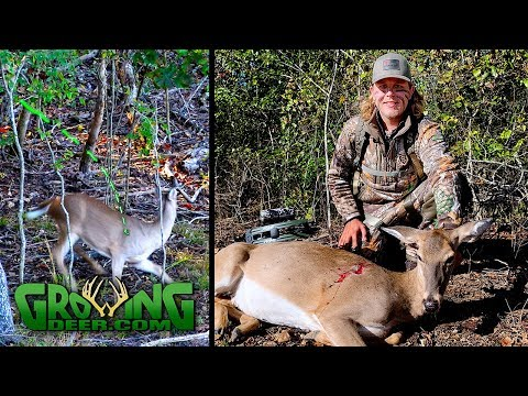 Bow Hunting: The Best Hunt We've Ever Videoed About Deer Reacting To A Shot