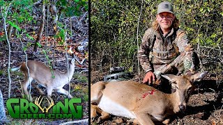 bow-hunting-the-best-hunt-we-ve-ever-videoed-about-deer-reacting-to-a-shot