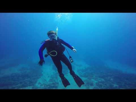 Anguilla Underwater