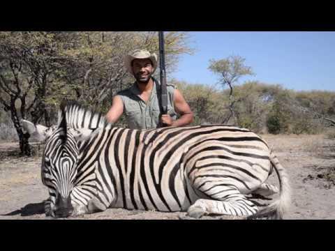 Cameron Mitchell takes a zebra with a .470 Nitro Express double rifle